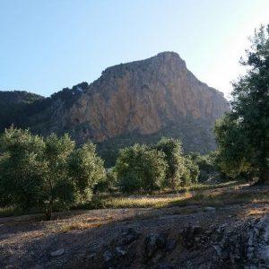Ruta de senderismo Moclín, Ruta del Montañés, Olivares